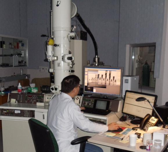 TEM & STEM – EELS & EDS -- Tools from Nanolab