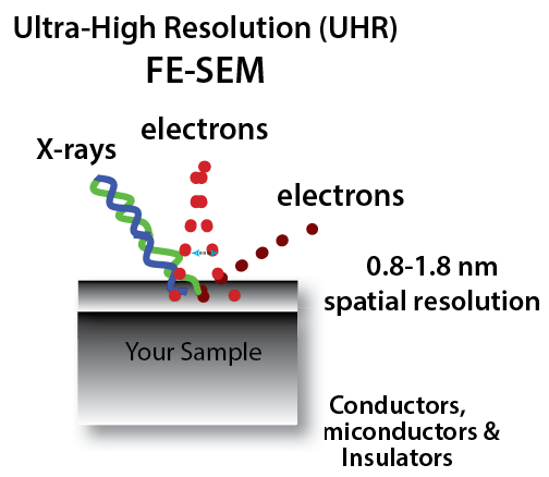 Ultra High Resolution FE-SEM